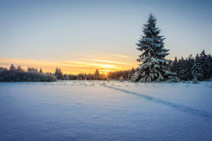 Meissner Sunrise by artmobe