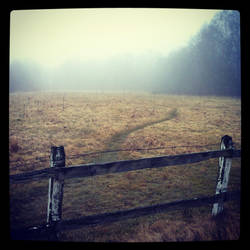 Fog. by kaoula