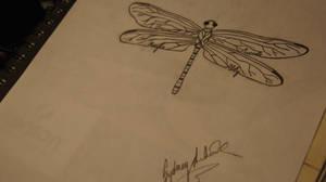 Dragonfly Tattoo Design by SpiritAngel1234