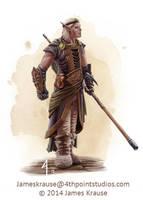 Rioun Devola, Talistryn Councilor of Coin by JamesJKrause