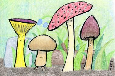 Mushrooms by SirWongIII