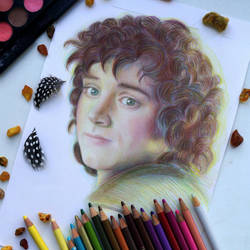 Frodo Baggins (Wip) The Lord of the Rings by Alena-Koshkar