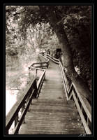 Creek Path by InLightImagery