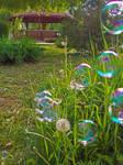 Moments In The Garden-3 by HikarinoChou