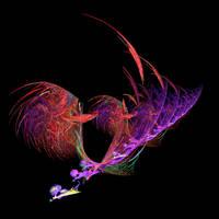Angelfish by allwaysjudee