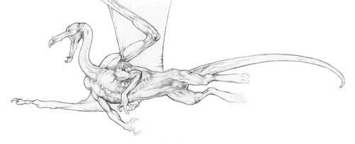 Swan_pencil by Tearup