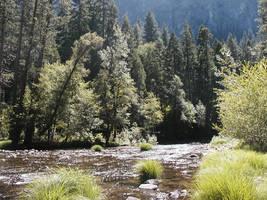 Yosemite-Ahwahnee 2005 - 2of6 by jmanx