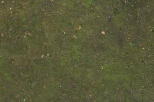 Concrete floor moss dirt texture 4770x3178 by hhh316
