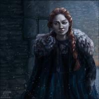 Winter Is Coming by Aurru
