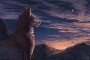 Stars by Aurru