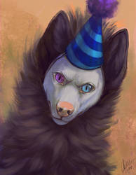 Stupid Hat by Aurru