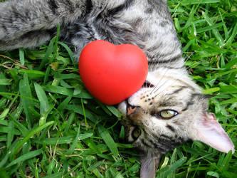 Heart Hunter by PavelVolkov