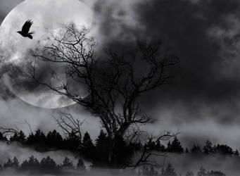 Dark Night by Vickie666