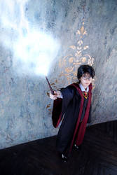 Harry Potter - 07 by YukiRichan