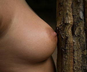 Holly by chrisvs