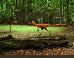 Huaxiagnathus orientalis by JosefaValdiviaT-Rex