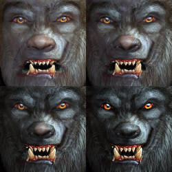 Werewolf Face Sequence by oboroten