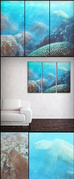 At First Sight : Landscapes by SingleHandedStudio