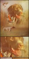 Pepper : Pet Portraits by SingleHandedStudio