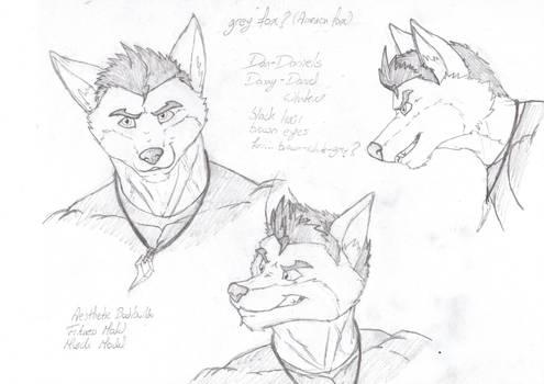 Dan the fox by DSA09