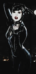 Realistic DC 2(Catwoman) by SharonQuinn