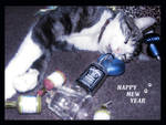 Happy Mew Year by Mz-Kitts