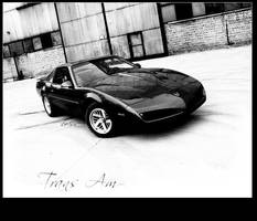 Trans Am no.1 by LeSsArt