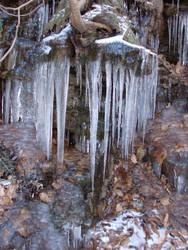 Icy 8 by dendem