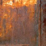 rusty beauty 137 by EvaShoots