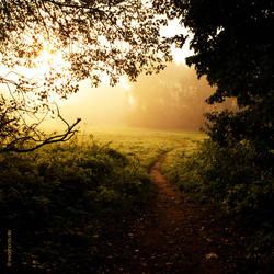my daily wonderland v2 by EvaShoots