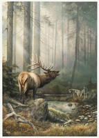 Echo in the Mist by denismayerjr