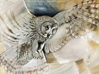 Great Grey Owl by Heliocyan