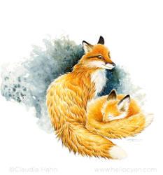 Winter Foxes by Heliocyan