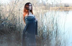 Swan by HeleneRock