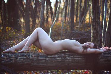 Magic Wood by HeleneRock