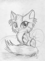 :cute kitty: by shadowundergroundgoh