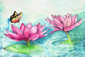 Lotus by AndreLuizBarbosa