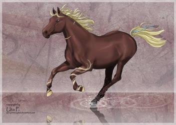 Zingal by SeraphimCrystal