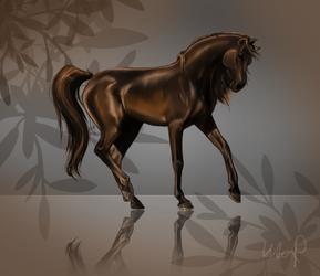 The Arabian Beauty by SeraphimCrystal