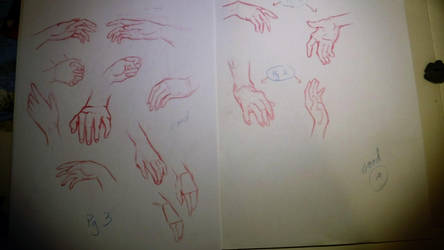 Hands assignment by Clbr6117