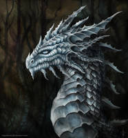 White Dragon Portrait by Vapolord