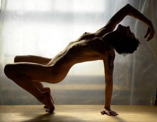 semi silhouette stretch by carvenaked