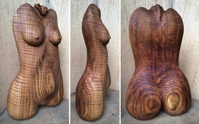 Tiger oak female torso views by carvenaked