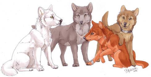 Wolf's Rain by AriaDog