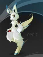 Cenit 2 by Cenit-v