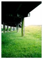 Highway Undergrass by neolmas