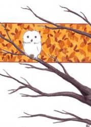 Owlsie by ankewehner
