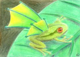 Winged Frog by ankewehner
