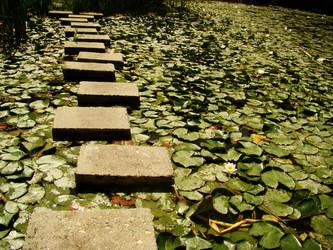 Green path by happybg