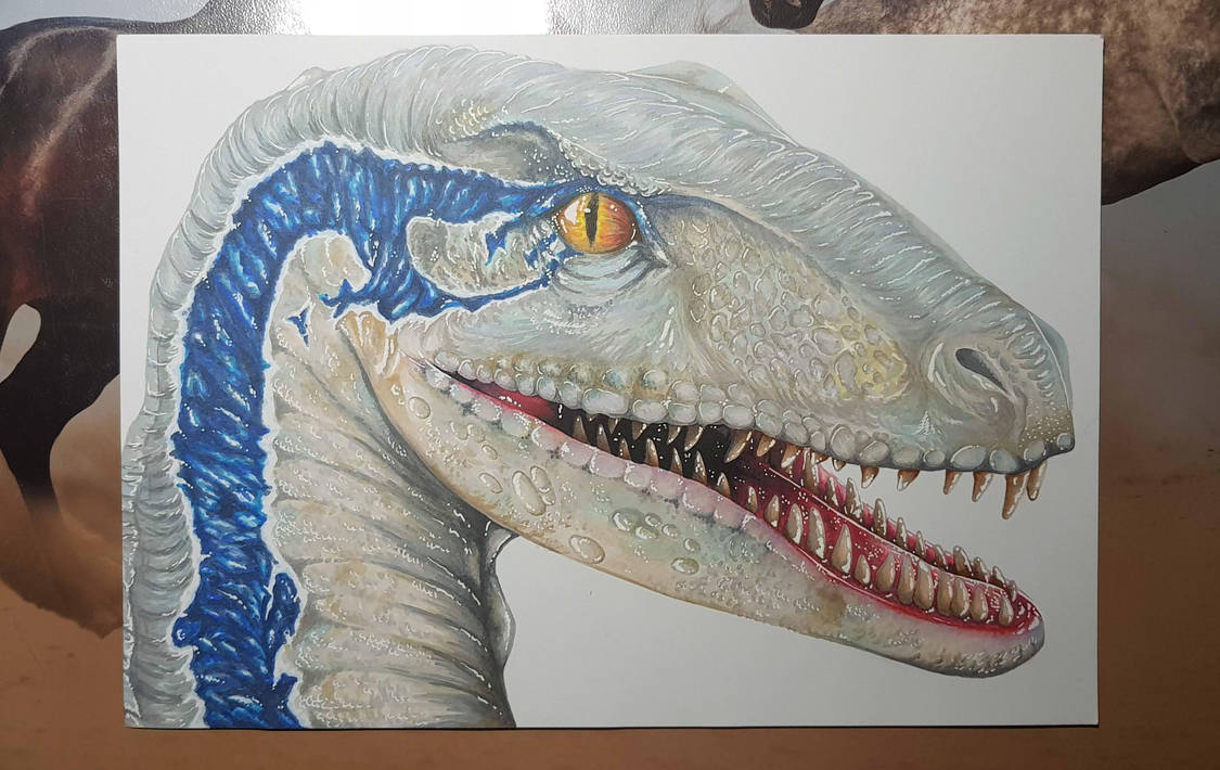 Jurassic World: Velociraptor Blue by blackmare56